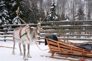 Lapland I