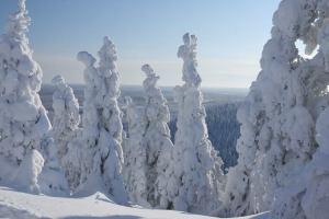 Lapland II